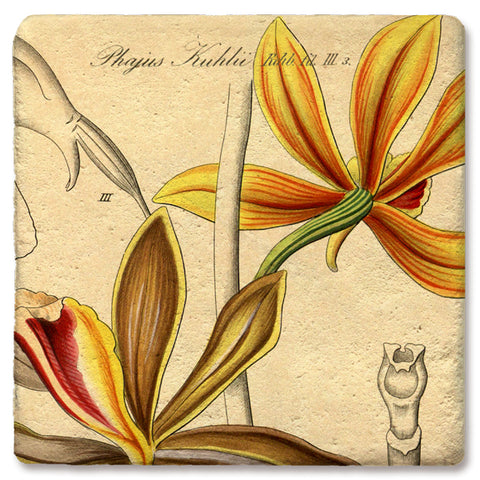"Tipsy Coasters - Natural Limestone Coaster ""Orange Orchid"""