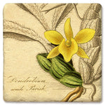 "Tipsy Coasters - Natural Limestone Coaster ""Yellow Orchid"""