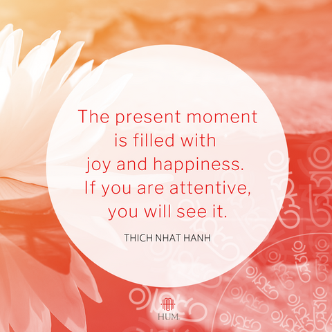 The present moment is filled with joy and happiness.  If you are attentive, you will see it.