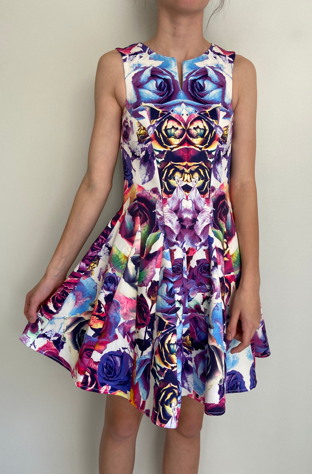 (Preloved) SARA PHILLIPS stunning Digital Printed A Line Dress Size 8
