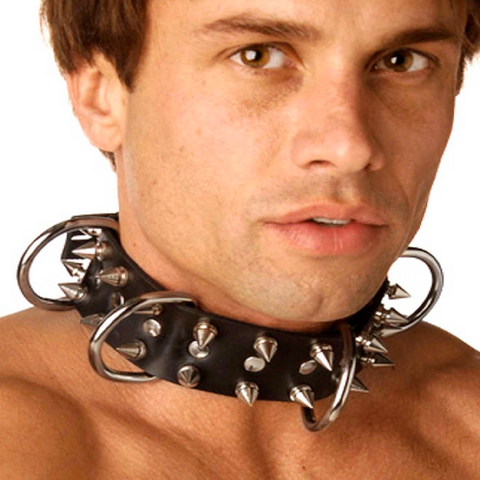 Strict Leather Spiked Dog Collar
