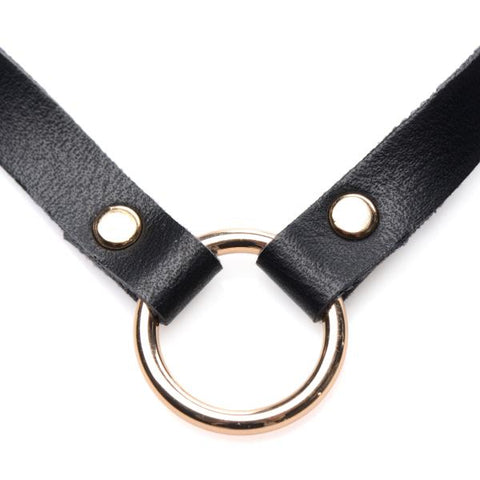Posh Pet Gold Ring Slim Choker