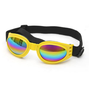 Windproof Protective Glasses