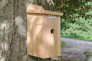 Flat Roof Bird Box (Camera Ready)