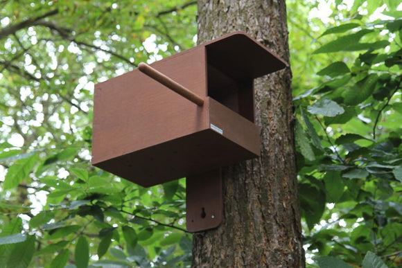 Kestrel Box With Wireless Camera
