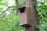 Little Owl Nest Box (Camera Ready)