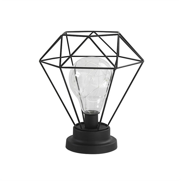Edison Style Metal Terrarium Lamp Warm White LEDs Wire Lights Battery Operated Night Lamp