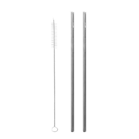 Stainless Steel Straws Set of 2 + Brush