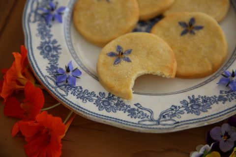 Borrago Borage Biscuits