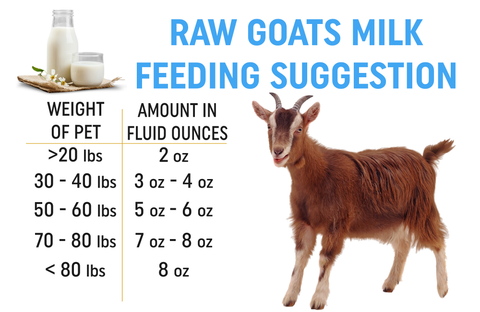 raw goats milk