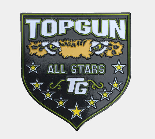 Top Gun Pin