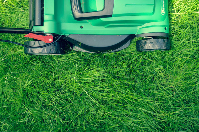 A Quick Guide To Spring Lawn Care