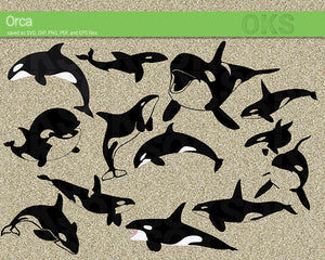 Orca, Killer Whale, svg, dxf, vector, eps, clipart, cricut, download