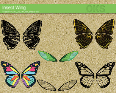 INSECT WING SVG FILE