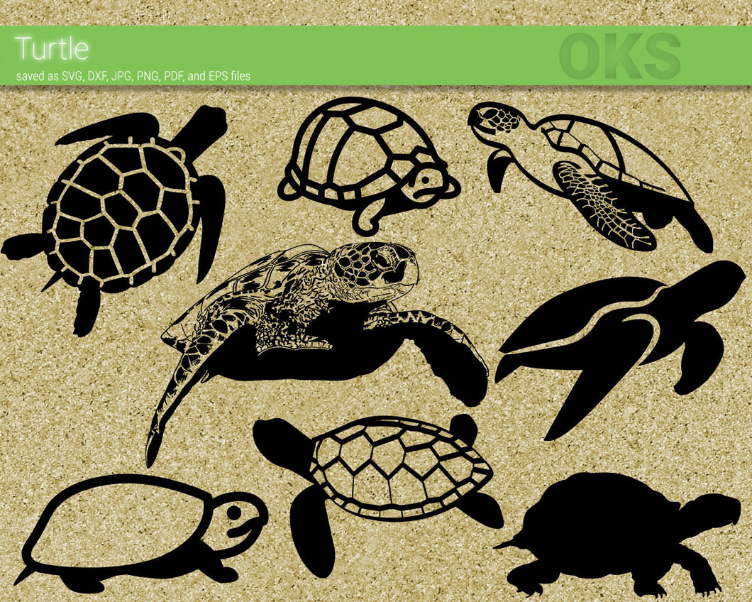turtle, tortoise, shell svg, dxf, vector, eps, clipart, cricut, download