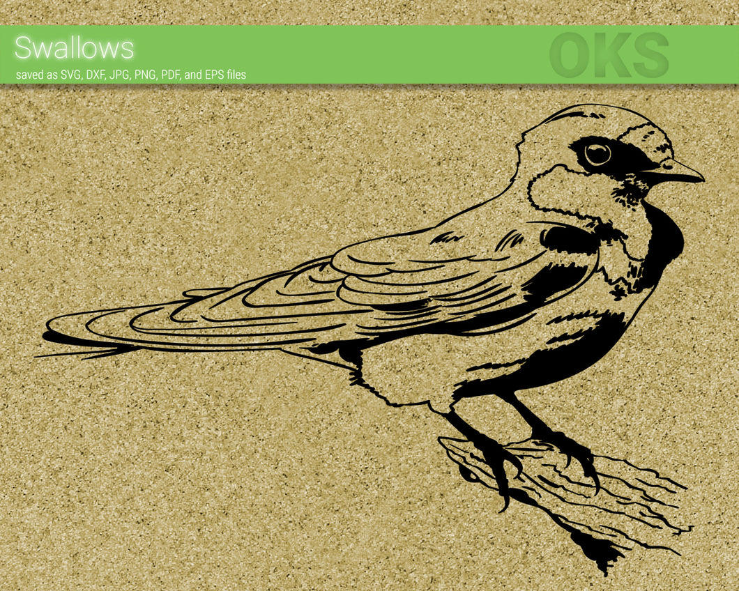 FREE swallows bird svg, dxf, vector, eps, clipart, cricut, download