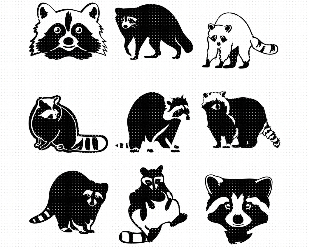 Raccoon svg, dxf, vector, eps, clipart, cricut, download