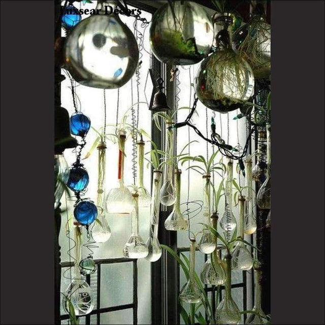 Glass Planters & Bulbs - Luxsear Décors