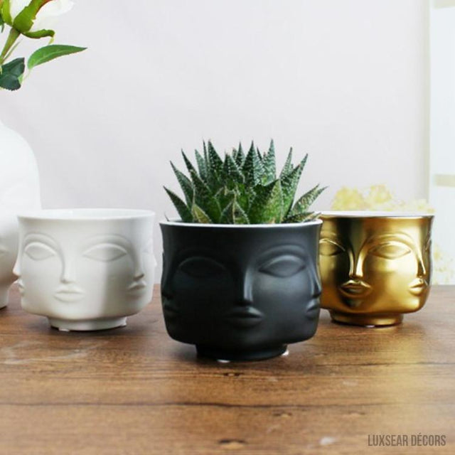Novelty Plant Pots and Garden Ornaments | Free Shipping