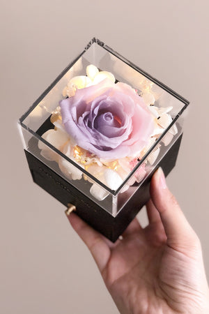 (MINI) Ombre - Jewelry Box