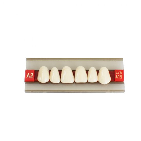 Acrylic Resin Denture Dental Teeth Shade G419 A2 A3