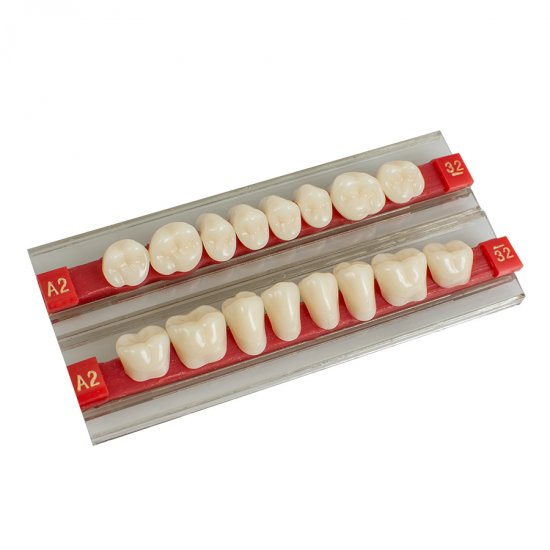 Acrylic Resin Denture Dental Teeth Shade
