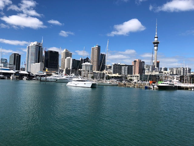 Auckland City Tour