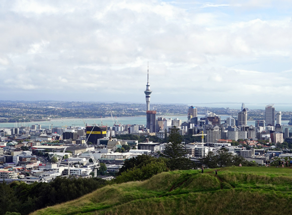 Auckland Private Tour