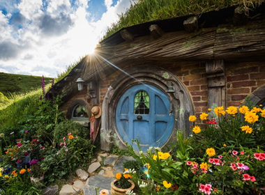 Waitomo & Hobbiton Tours