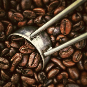 Colombian, Ethiopian, and Guatemalan Coffee… What's the Difference?