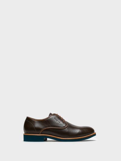 Camport Brown Derby Shoes