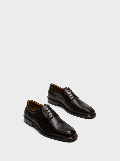 Camport Brown Lace-up Shoes