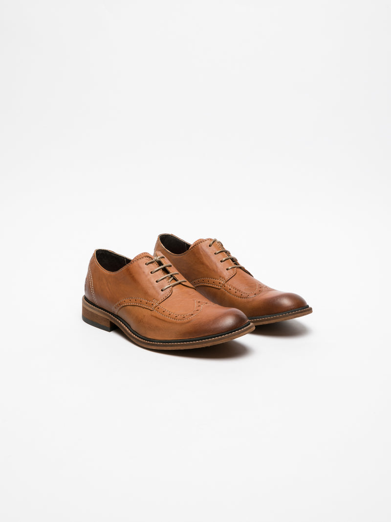 Chocolate Brown Derby Shoes