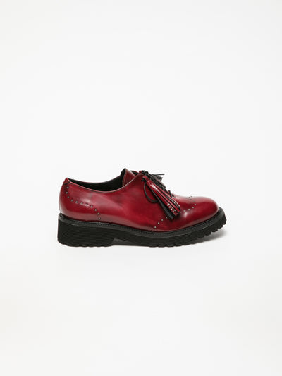 Foreva DarkRed Oxford Shoes
