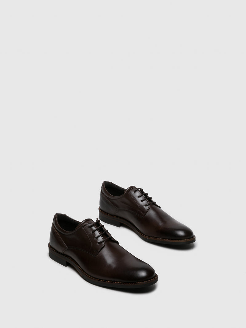 Foreva Brown Derby Shoes