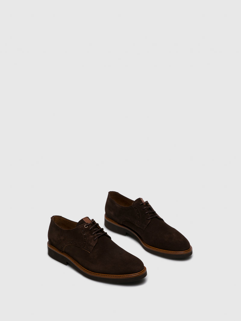 Camel Oxford
