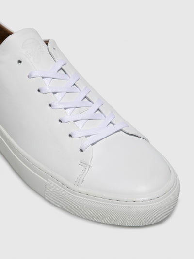 Fungi White Lace-up Trainers