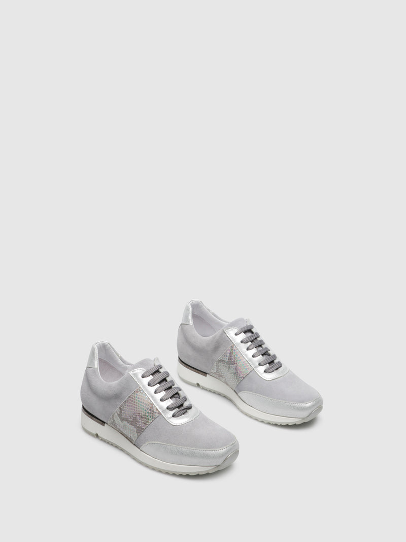PintoDiBlu Gray White Lace-up Trainers