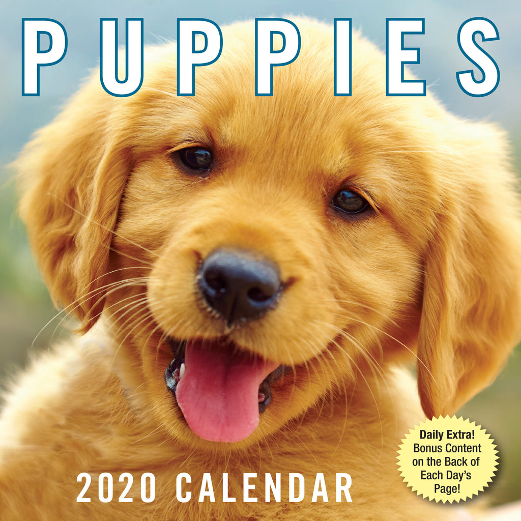 Puppies a day Calendar- Item #H0020