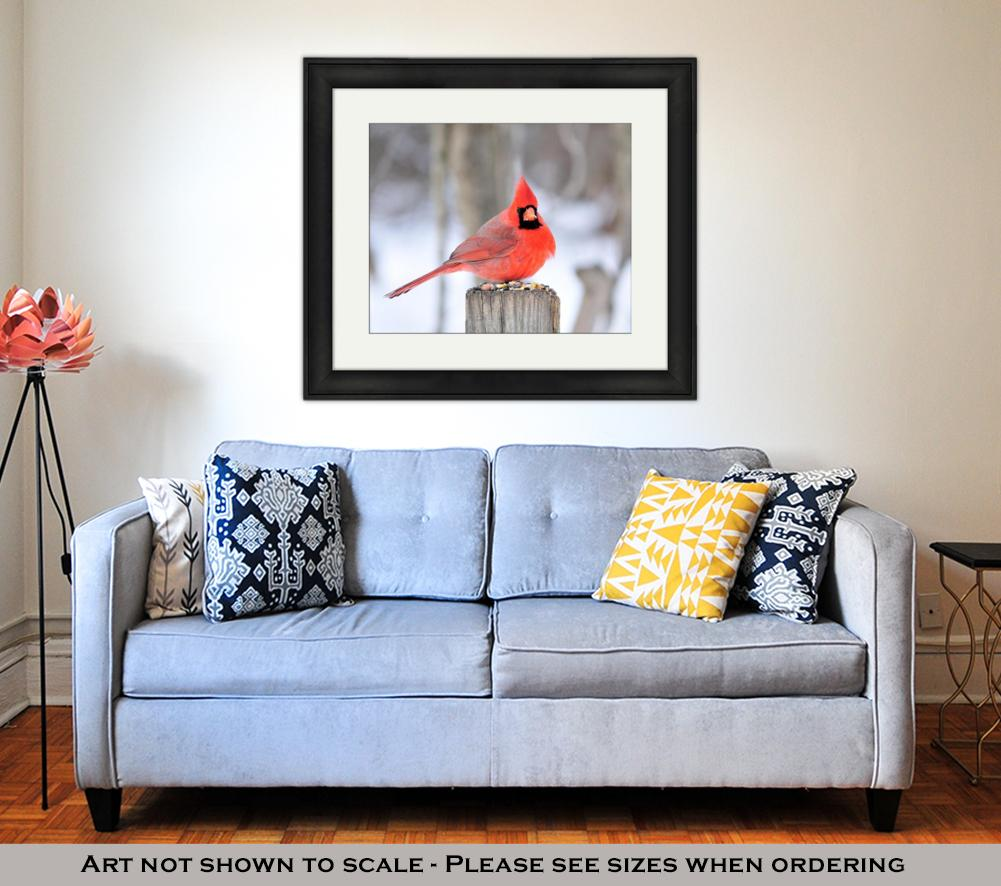Framed Print, Northern Cardinal