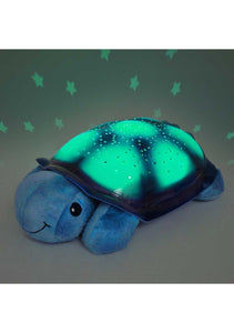 Twilight Turtle