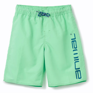 Animal Kids Tannar Boardshorts | Freeze Green