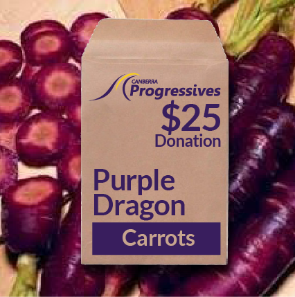 'PURPLE DRAGON CARROTS' SEED DONATION