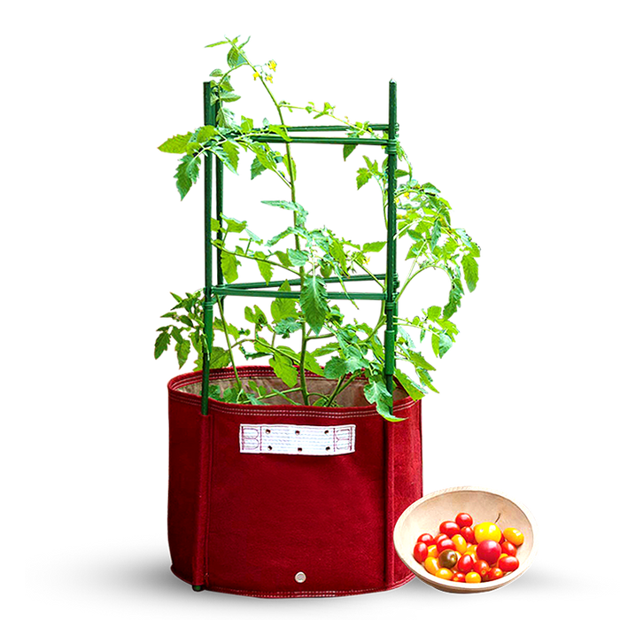 57L Maroon Big Tomato Fabric Planter (42 x 41cm) with Stacking Kit Red