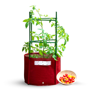 57L Maroon Big Tomato Fabric Planter (42 x 41cm) with Stacking Kit, Planter Pot,BloomBagz - greenleif.sg