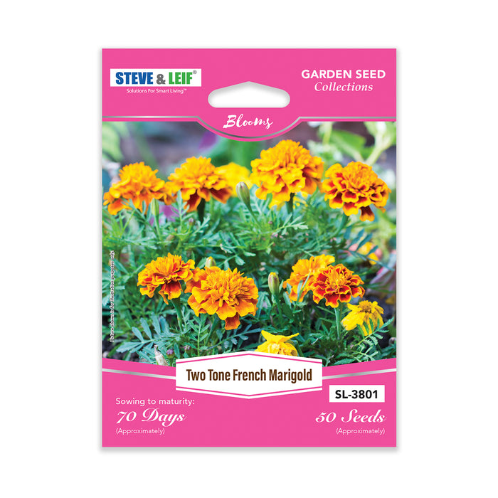 Two-Tone French Marigold Seeds
