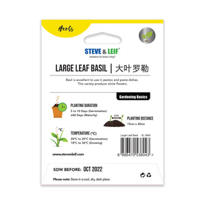 Large Leaf Basil Seeds