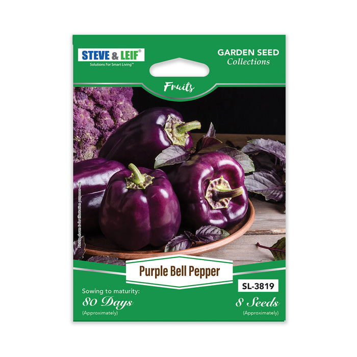 Purple Bell Pepper Seeds