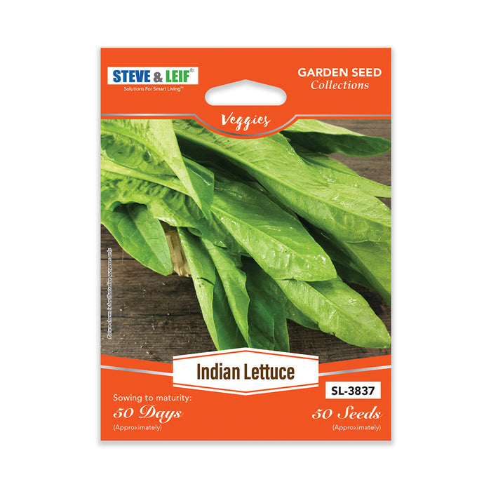 Indian Lettuce Seeds