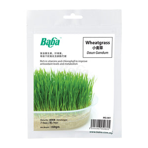 Wheatgrass Seeds MG-001 (60gm), ,Baba - greenleif.sg